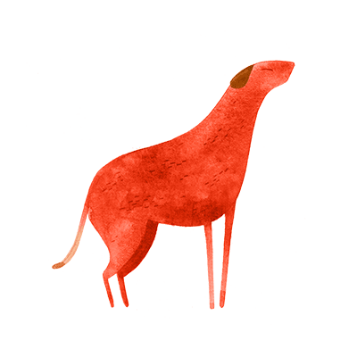 horóscopo chines cão