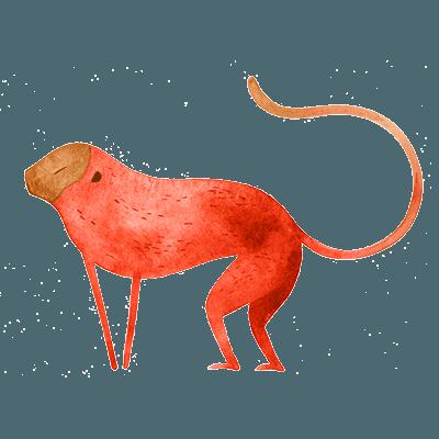 horóscopo chines macaco