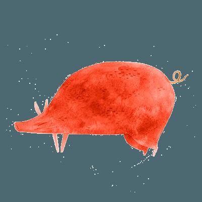 horóscopo chines porco