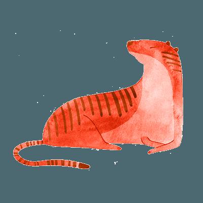 horóscopo chines tigre