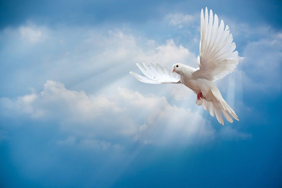 Oração do Divino espírito Santo