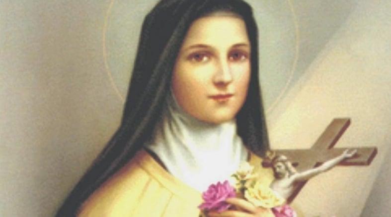 oração Santa Terezinha das rosas